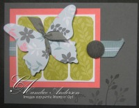 May '09 Buterfly Die Cut
