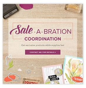 Sale-A- Bration Coordination items