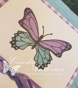 Butterfly stamped with solid image